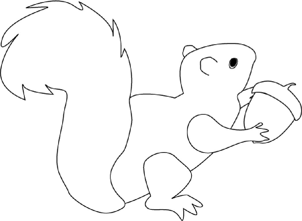 coloring book squirrel